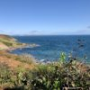 South West Coastal Path from Porthallow to Nare Point.